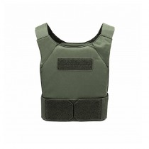 Warrior Covert Plate Carrier - Olive 2